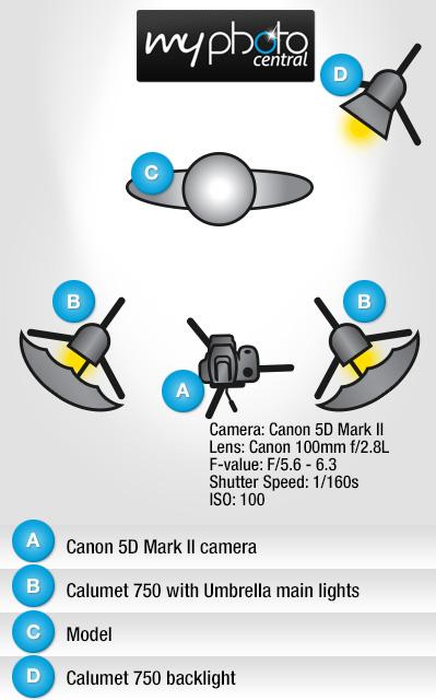 diagram-pinup