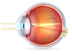 me-my-camera-and-eye-retina