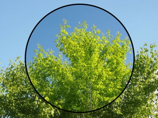 How-Circular-Polarizer-Filter-Works